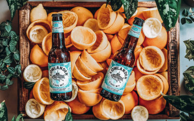 Save the planet, one Lowlander beer at a time
